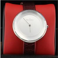 Authentic Skagen SKW2273 768680211924 B00NBPWTXC Fine Jewelry & Watches